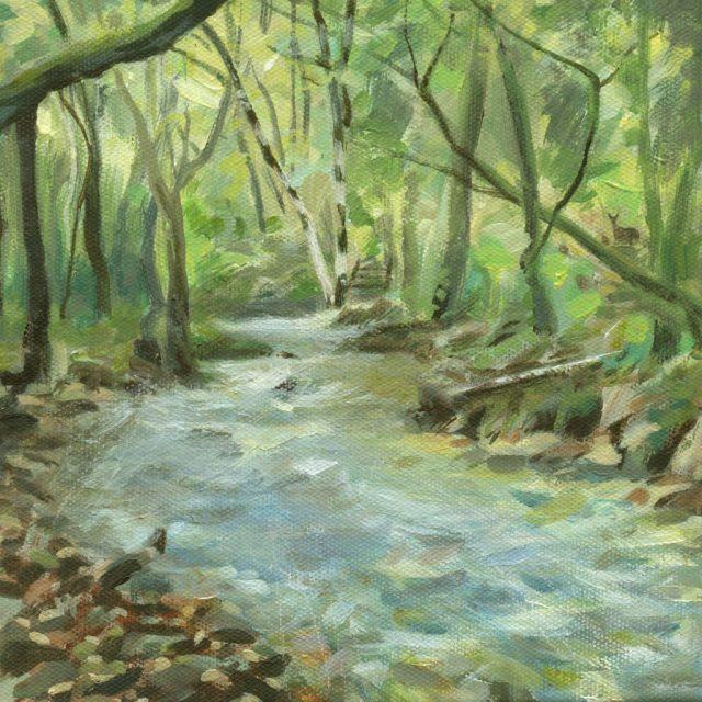 dartmoor - at becka brook