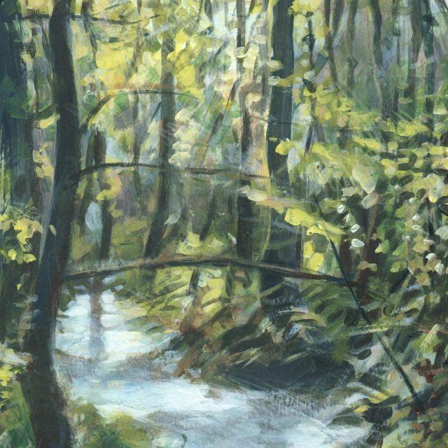 dene woods - uplyme - october